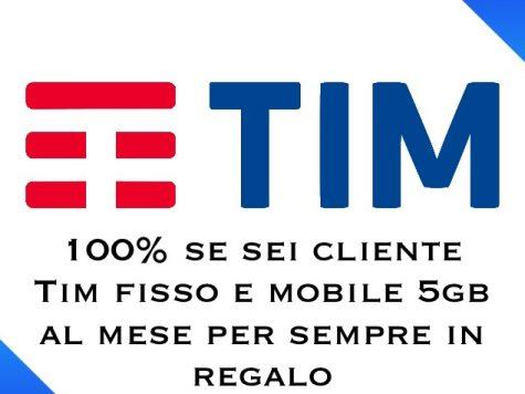 Tim 100%