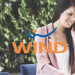 WindFibra Unlimited